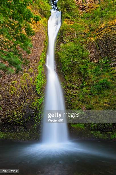 USA, Oregon, Columbia River Gorge, Horsetail Falls