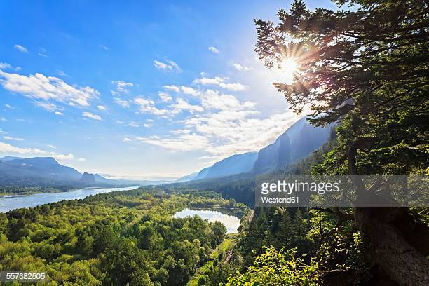 usa, oregon, columbia river gorge, multnomah county, view to columbia river - columbia river gorge stock pictures, royalty-free photos & images