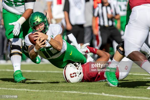 Oregon Ducks quarterback Justin Herbert loses the ball while being sacked by Stanford Cardinal linebacker Jordan Fox during the college football game...