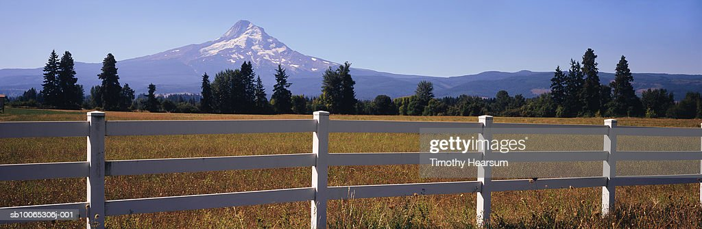 USA, Oregon, field and fence with Mt Hood in background : Foto stock