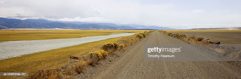 USA, Oregon, Goose Lake Causeway with blooming chamisa (Chrysothamnus nauseosus) at roadside : Foto stock