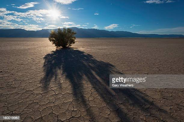 USA, Oregon, Harney County, Alvord Desert at sunset