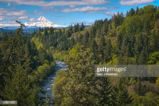 usa, oregon, high angle view of hood river with mt hood in background - hood river stock pictures, royalty-free photos & images