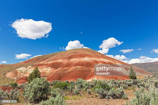 USA, Oregon, John Day Fossil Beds National Monument, Painted Hills