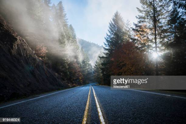 usa, oregon, klamath county, road in crater lake national park - noroeste do pacífico imagens e fotografias de stock