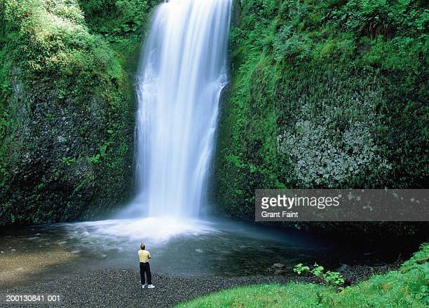 usa, oregon, man looking at multnomah falls, rear view, elevated view - multnomah falls stock pictures, royalty-free photos & images