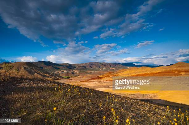 usa, oregon, mitchell, painted hills at day - fossil site stock pictures, royalty-free photos & images