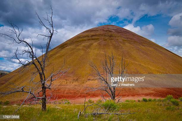 usa, oregon, mitchell, scenic view of hill - fossil site stock pictures, royalty-free photos & images