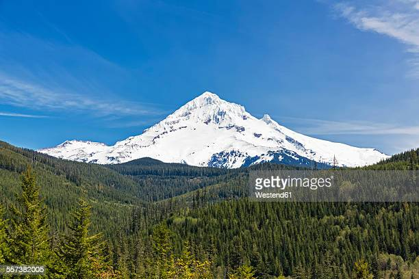 usa, oregon, mount hood - mt hood stock pictures, royalty-free photos & images
