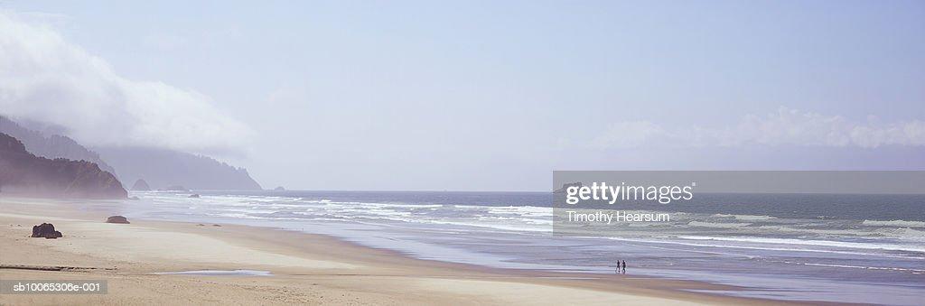 USA, Oregon, near Tolovana Park, Arcadia Beach State Recreation Site, two people walking on beach : Foto stock
