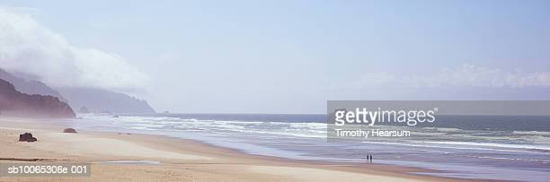 usa, oregon, near tolovana park, arcadia beach state recreation site, two people walking on beach - timothy hearsum stock photos and pictures
