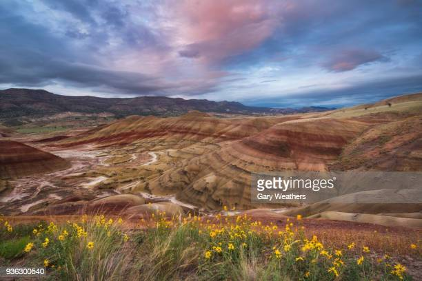 usa, oregon, painted hills, scenic view of striped mountains - john day fossil beds national park stock pictures, royalty-free photos & images