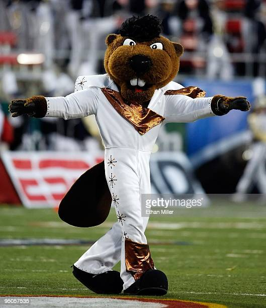 Oregon State Beavers mascot Benny appears on the field in an Elvis Presleyinspired costume before the team's game against the Brigham Young...