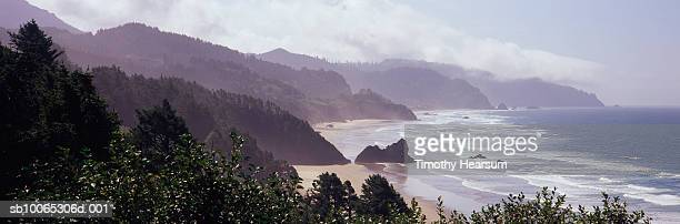 usa, oregon, tolovana park, waves washing ashore at arcadia beach state recreation site - timothy hearsum stock pictures, royalty-free photos & images