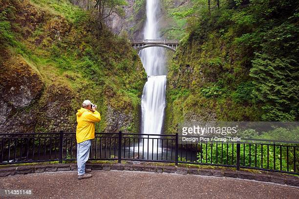 oregon, united states of america - multnomah falls stock pictures, royalty-free photos & images