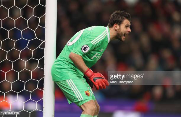 Orestis Karnezis of Watford in action during the Premier League match between Stoke City and Watford at Bet365 Stadium on January 31 2018 in Stoke on...