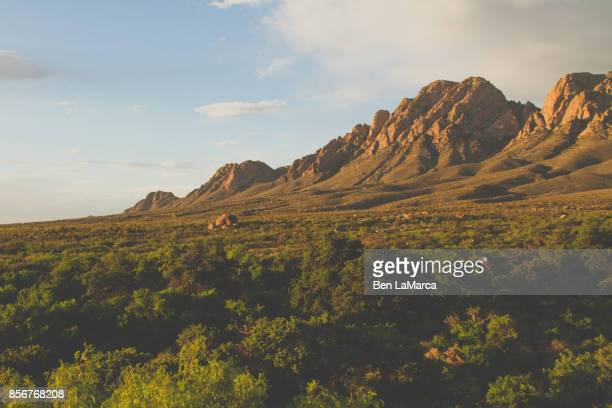 nm organ mountains - foothills - las cruces new mexico stock pictures, royalty-free photos & images