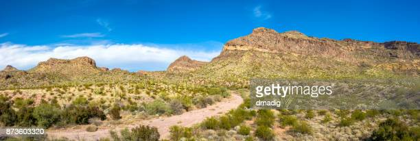 Organ Pipe Cactus National Monument in Arizona's Sonoran Desert, Arid but Beautiful under a Brilliant Blue Sky