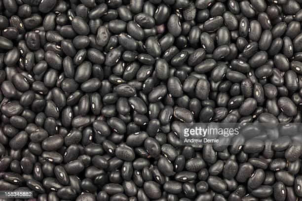 Organic Black Turtle Beans,  Black Kidney Beans