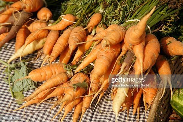 Organic Carrots at Farmer's Market