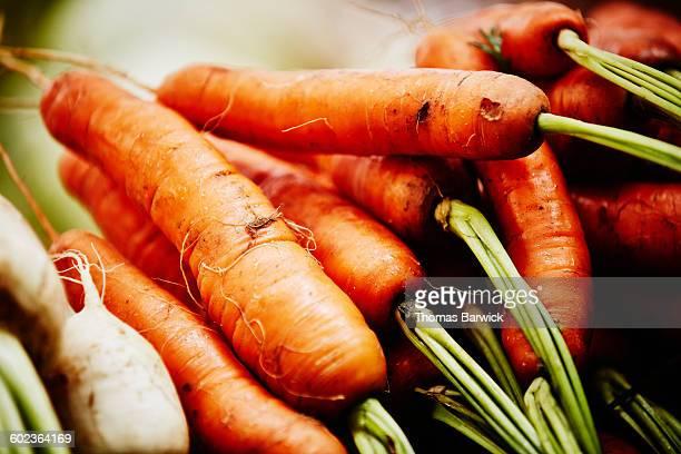 Organic carrots at farmers market