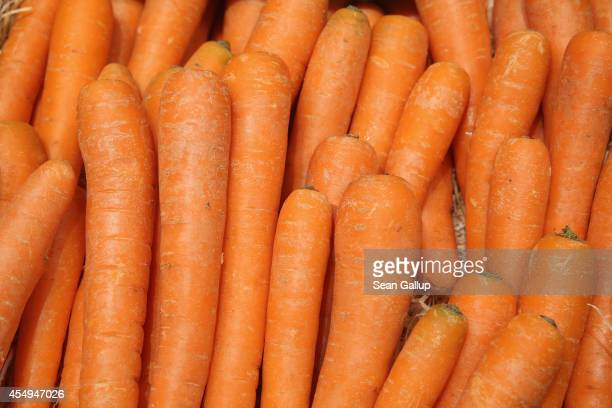 Organic carrots lie on display among fruits and vegetables at the Liebherr stand at the 2014 IFA home electronics and appliances trade fair on...