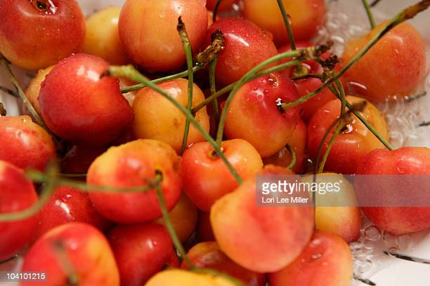 organic cherries - lori lee stock pictures, royalty-free photos & images