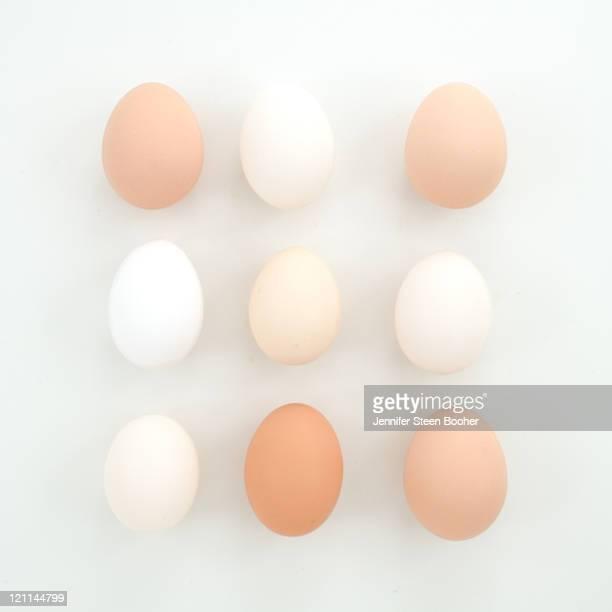 organic chicken eggs - ei bruin stockfoto's en -beelden