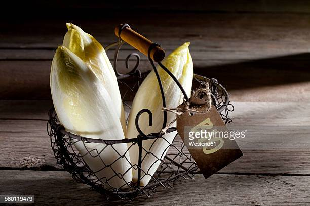 Organic chicory in wire basket