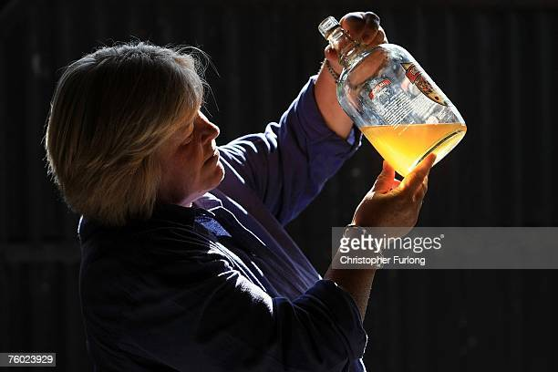 Organic cider maker Rosie Hawnt checks the quality of the latest batch in the orchards of Ashgrove Farm in the village of Marden on 8 August 2007 in...