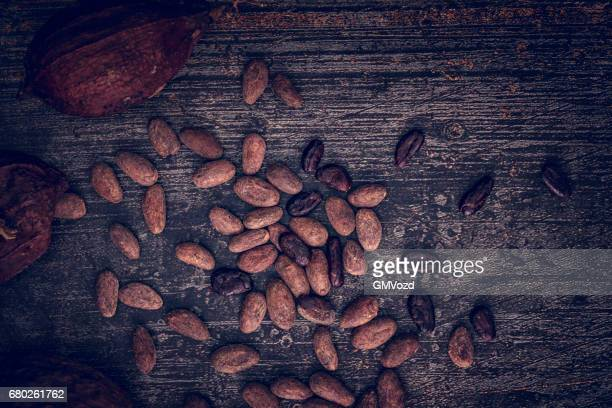 organic cocoa beans - cacao tree stock photos and pictures