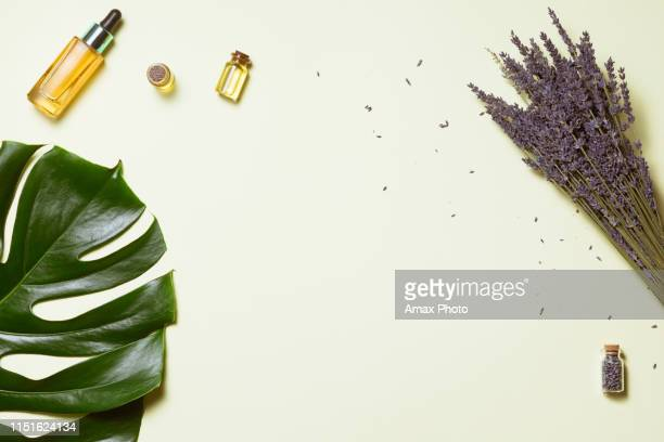 organic cosmetic with lavender flowers and oil on white background with copy space, top view and flat lay - flat lay stock pictures, royalty-free photos & images