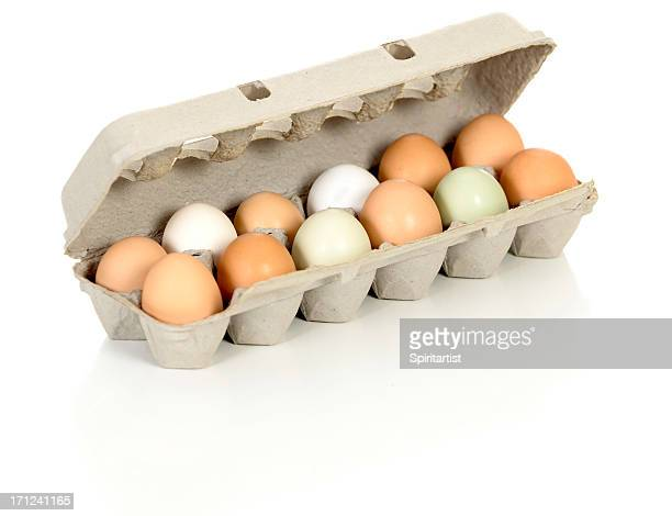 Bio-Eiern aus Freilandhaltung Hühner