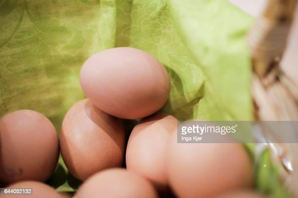 Organic eggs on February 06 2017 in Berlin Germany