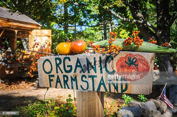 organic farm stand - bittersweet berry stock photos and pictures