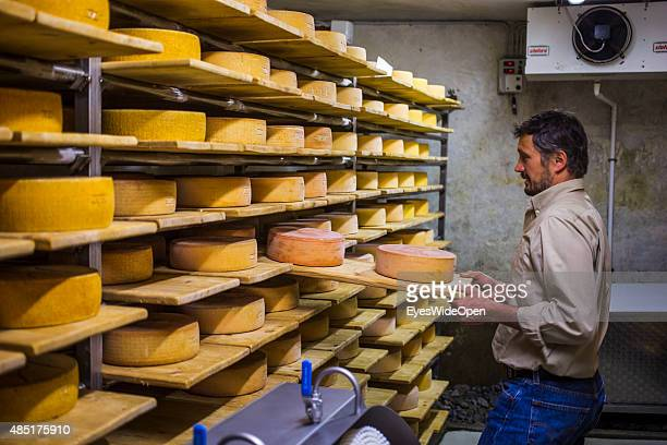 Organic farmer Alexander Agethle of cheese dairy Englhorn shows his organic farm and how to produce cheese on April 13 2013 in Schleis near Meran...