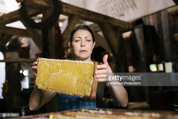 Organic Farmer collecting Honey