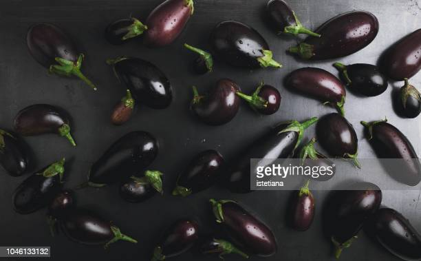 organic farmer eggplants background - eggplant stock pictures, royalty-free photos & images
