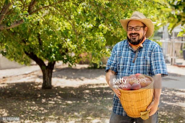 organic farmer fresh veggies - peach tree stock pictures, royalty-free photos & images