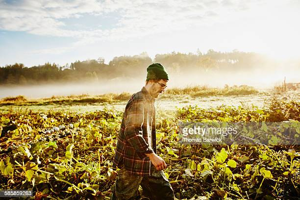 Organic farmer walking through field