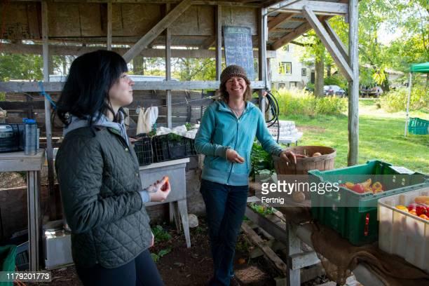organic farmers at an outdoor farm stand - bancarella di verdura foto e immagini stock