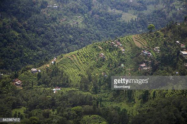 Organic farms stand on the terraces of hillsides on the outskirts of Gangtok Sikkim India on Tuesday May 3 2016 For more than a decade in the...