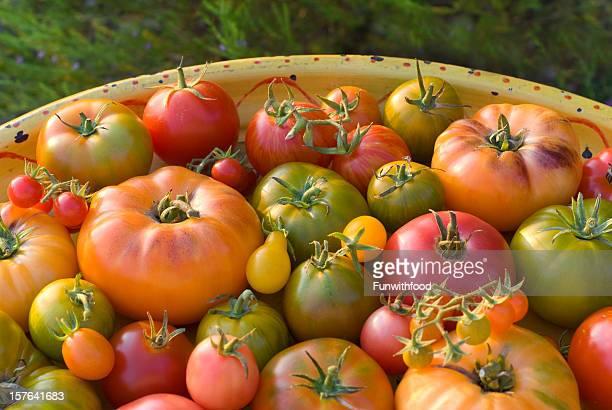 Organic Homegrown Fresh Summer Produce, Heirloom Tomatoes Vegetable Harvest