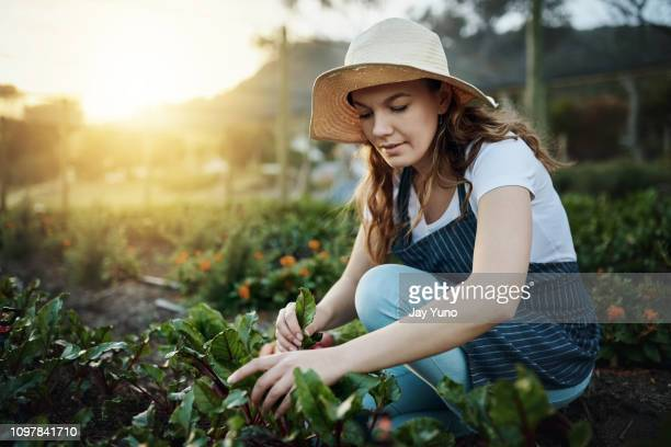 Organic is worth getting your hands dirty for