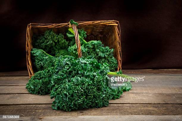 Organic kale in basket