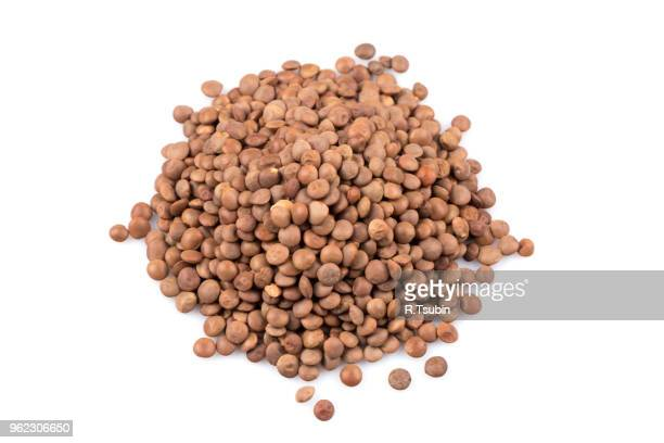 organic lentils isolated on a white background - close up shot - lentil stock pictures, royalty-free photos & images