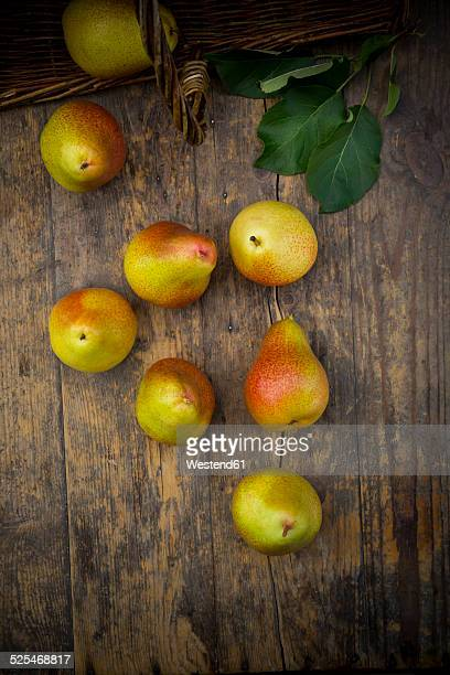 Organic pears, Trout pears, Pyrus Communis