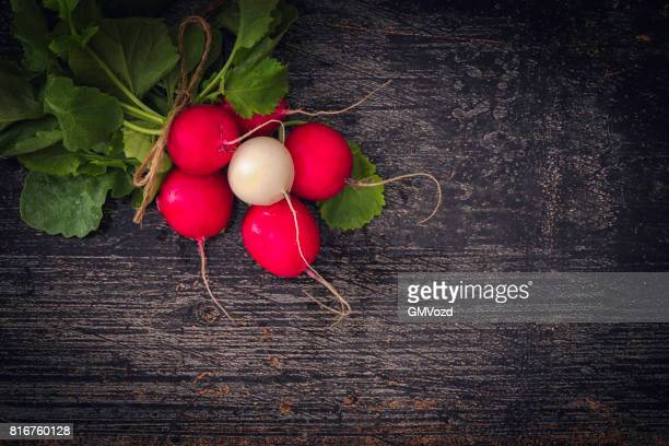 Organic Radishes on Rustic Background