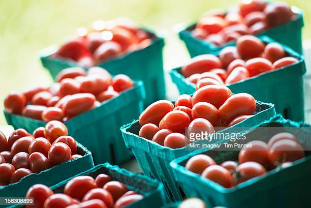 Organic red cherry tomatoes in boxes on a market stall.
