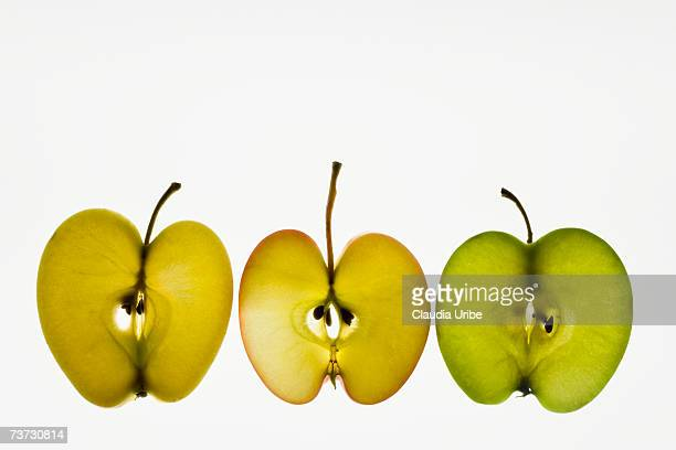 organic vegetables on lightbox - lightbox stock photos and pictures